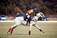 Oyster Cup Polo tournament