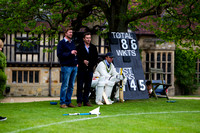 Cricket at the Suttons 2012